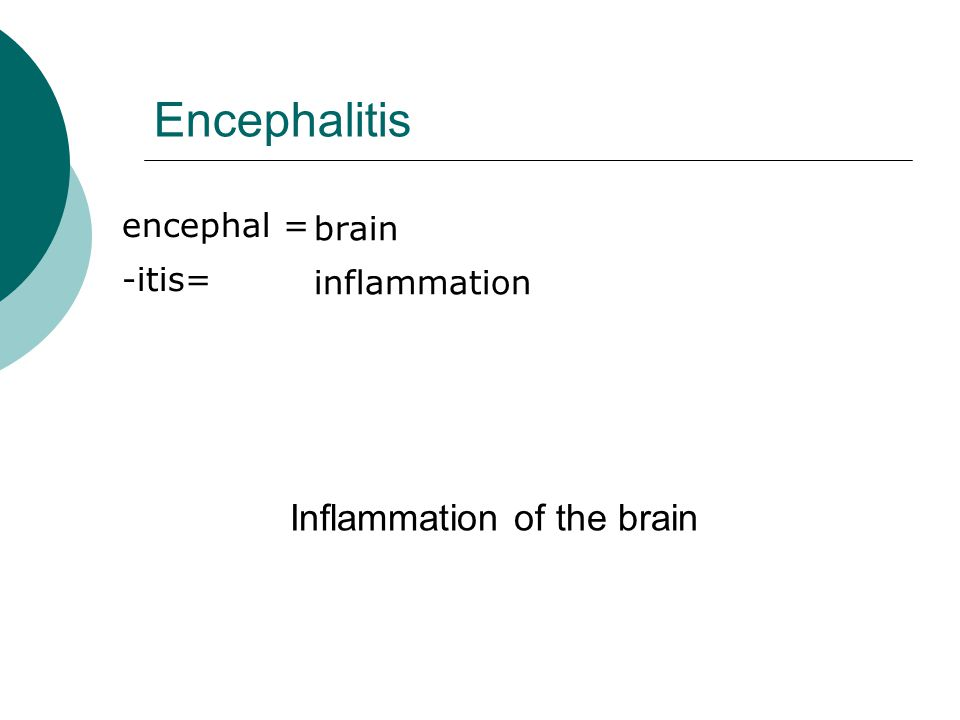 Encephalitis encephal = -itis= brain inflammation Inflammation of the brain