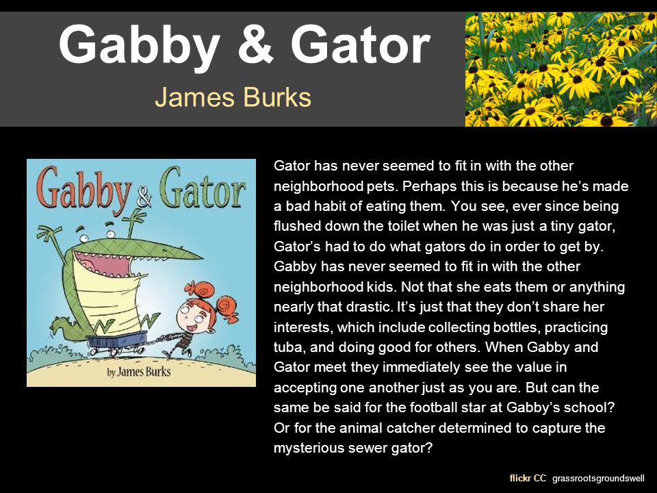 Gabby & Gator flickr CC grassrootsgroundswell James Burks Gator has never seemed to fit in with the other neighborhood pets. Perhaps this is because h