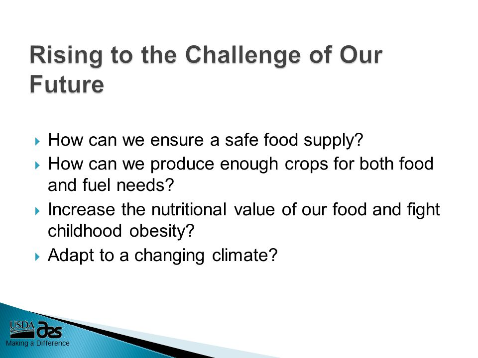 Making a Difference  How can we ensure a safe food supply.