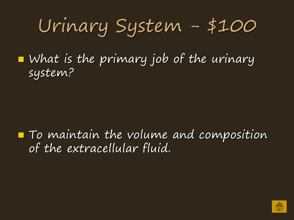 Urinary System - $100 What is the primary job of the urinary system.