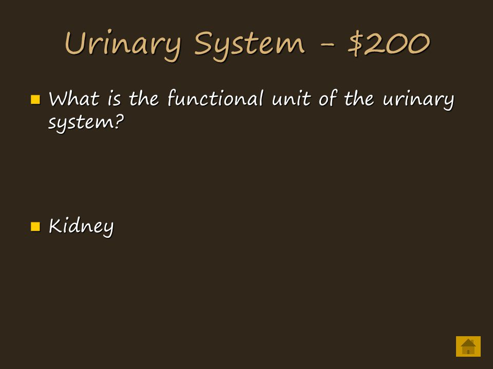 Urinary System - $200 What is the functional unit of the urinary system.