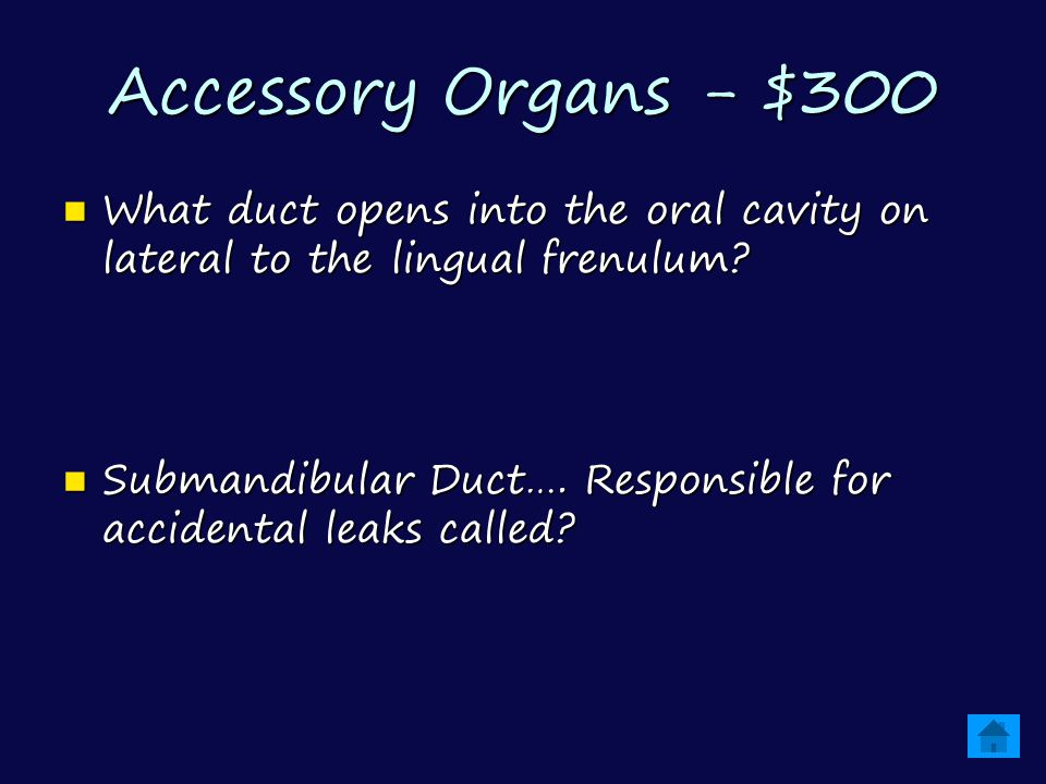 Accessory Organs - $300 What duct opens into the oral cavity on lateral to the lingual frenulum.