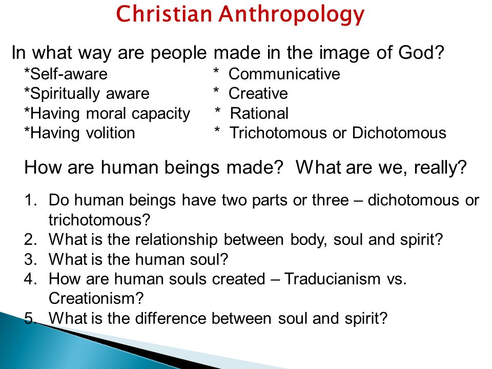 Christian Anthropology In what way are people made in the image of God.