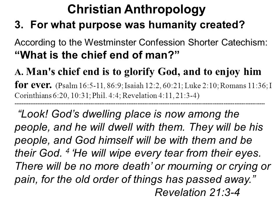 Christian Anthropology 3.For what purpose was humanity created.