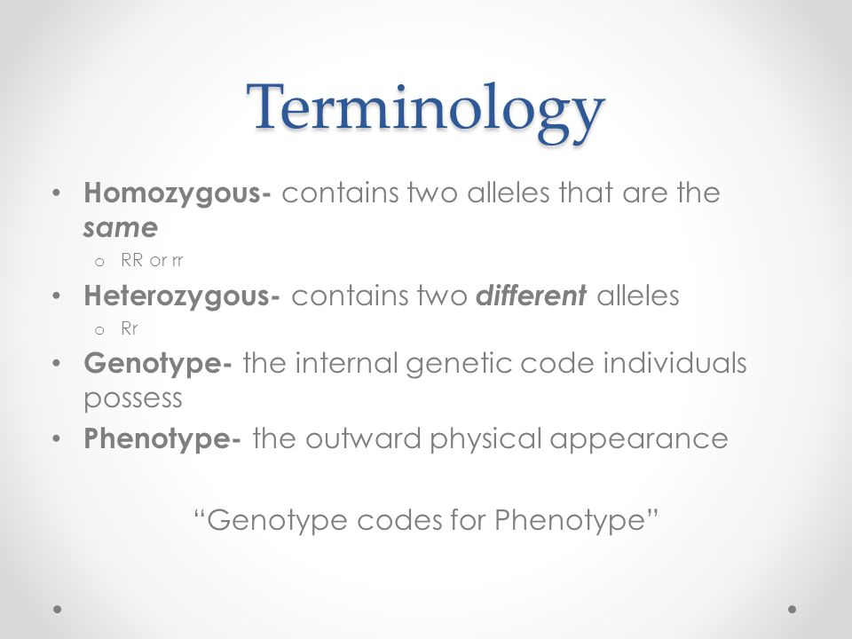 Terminology Homozygous- contains two alleles that are the same o RR or rr Heterozygous- contains two different alleles o Rr Genotype- the internal genetic code individuals possess Phenotype- the outward physical appearance Genotype codes for Phenotype