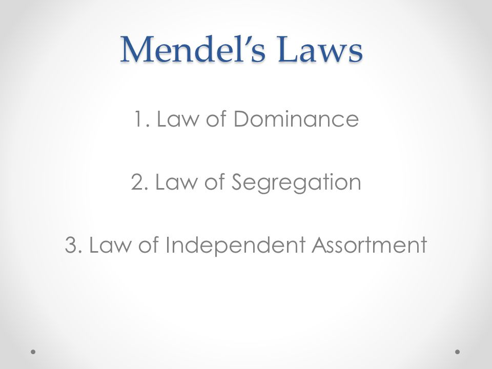 Mendel's Laws 1. Law of Dominance 2. Law of Segregation 3. Law of Independent Assortment