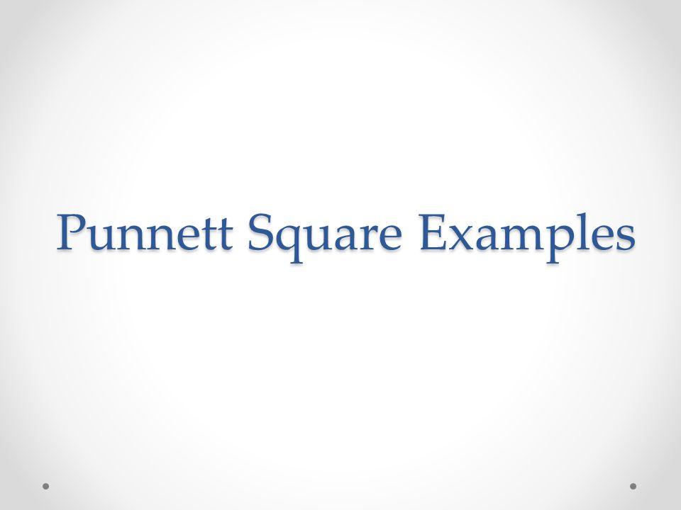 Punnett Square Examples
