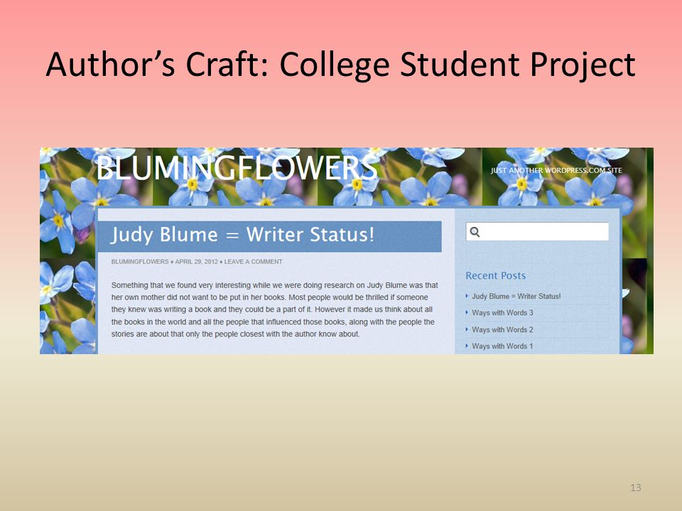 Author's Craft: College Student Project 13
