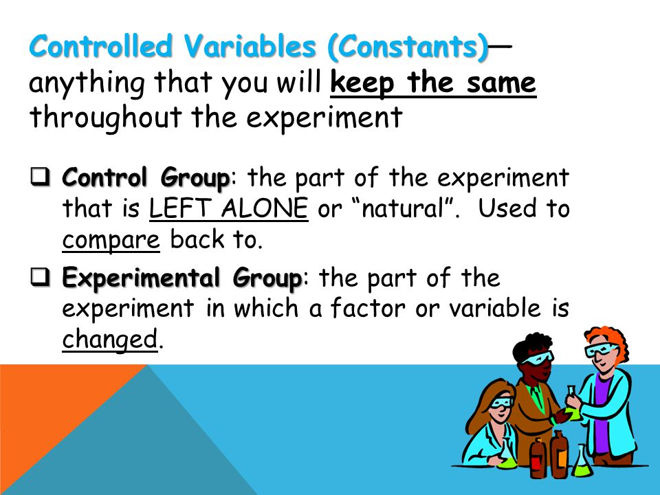 """ Control Group  Control Group: the part of the experiment that is LEFT ALONE or """"natural"""". Used to compare back to.  Experimental Group  Experimen"""