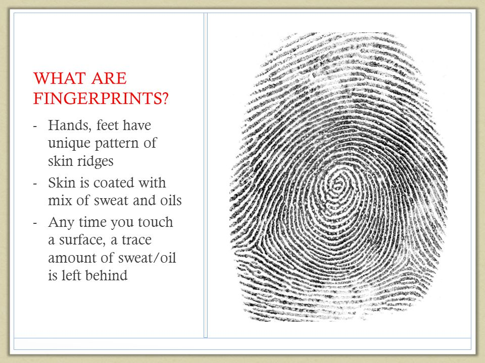 Characteristics of Fingerprints (Book pg 137 – you need to see pictures!) Arches (5%) Plain and Tented Whorls (30%) Plain, Central pocket loop, double loop, accidental Loops (65%) Delta—a triangular region near a loop Core—the center of a loop or whorl PURPOSE: categories provide quick way to eliminate suspects.