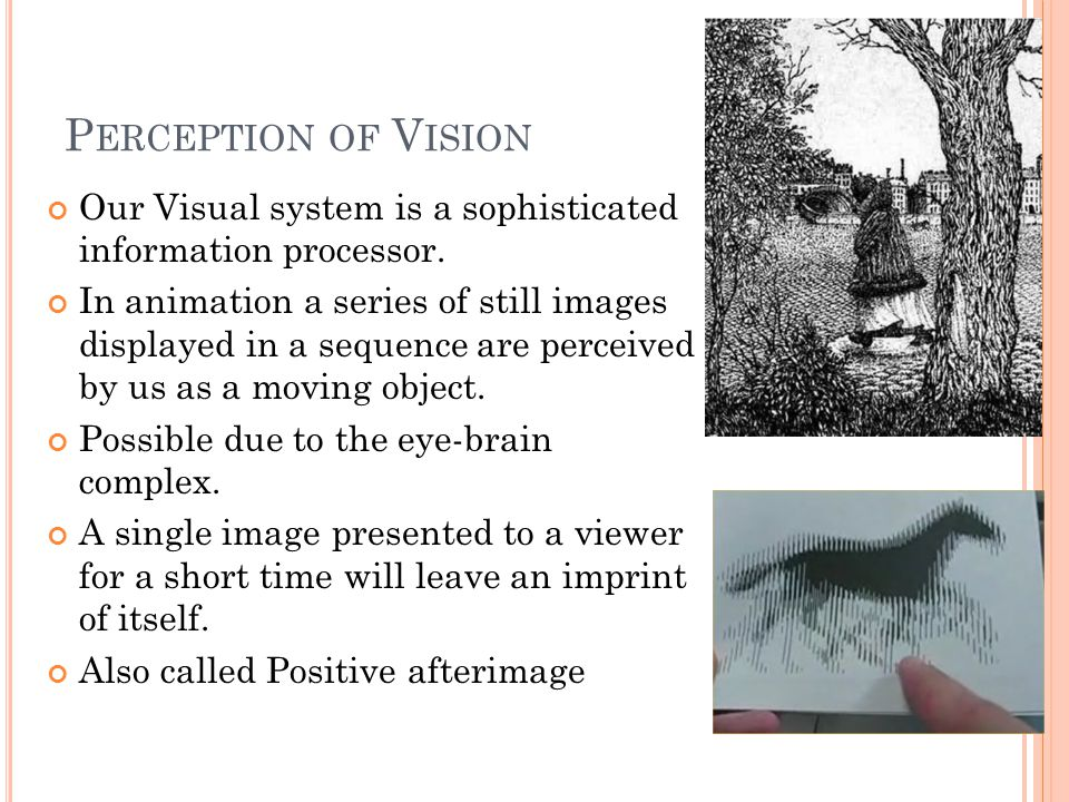 P ERCEPTION OF V ISION Induces the sense of continuous imagery Afterimages fill in the gap Played fast enough looks like continuous animation NTSC format displays at 30 fps Cartoons can be as low as 6 fps Pixar displays at 24 fps.