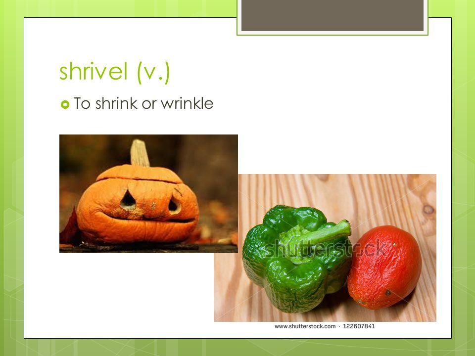 shrivel (v.)  To shrink or wrinkle