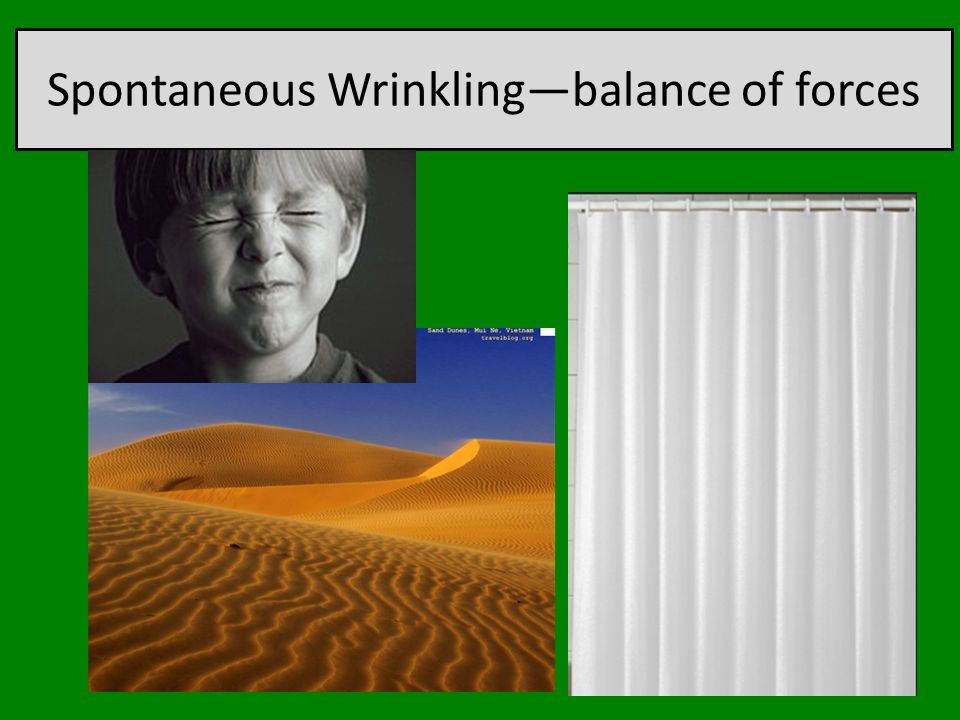 Spontaneous Wrinkling—balance of forces