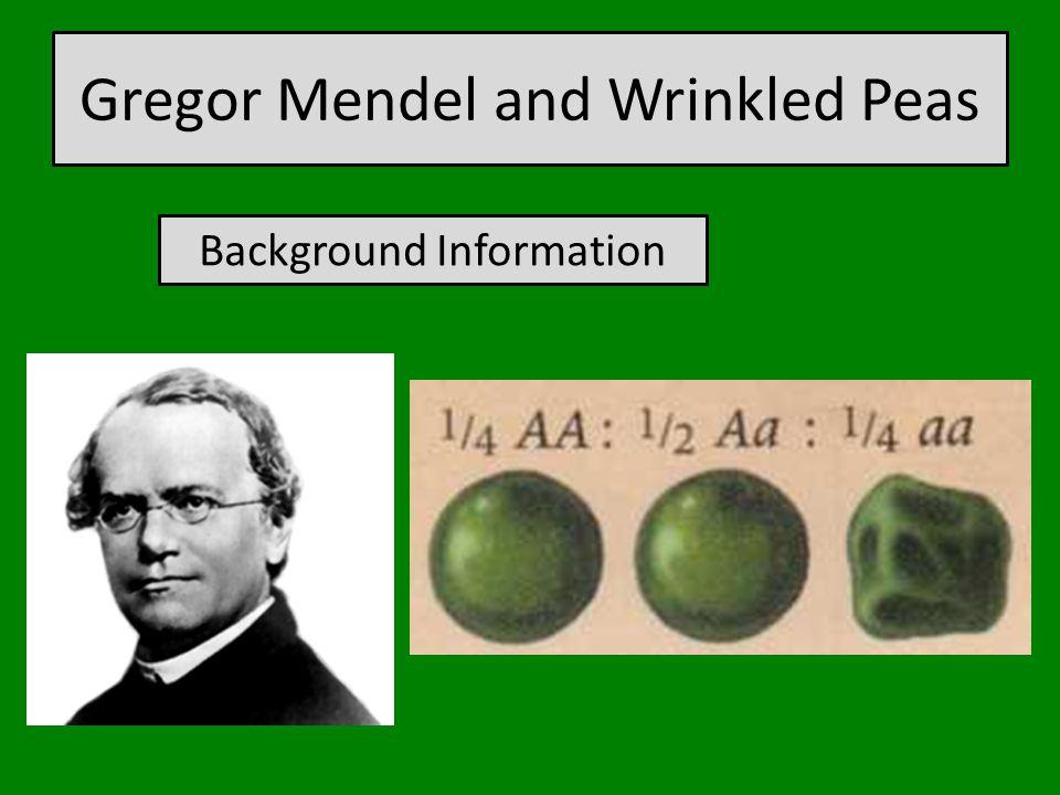 Gregor Mendel and Wrinkled Peas Background Information