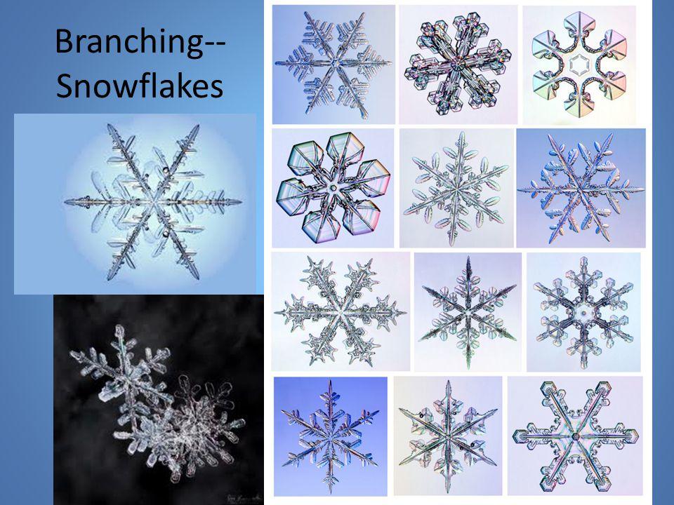 Branching-- Snowflakes