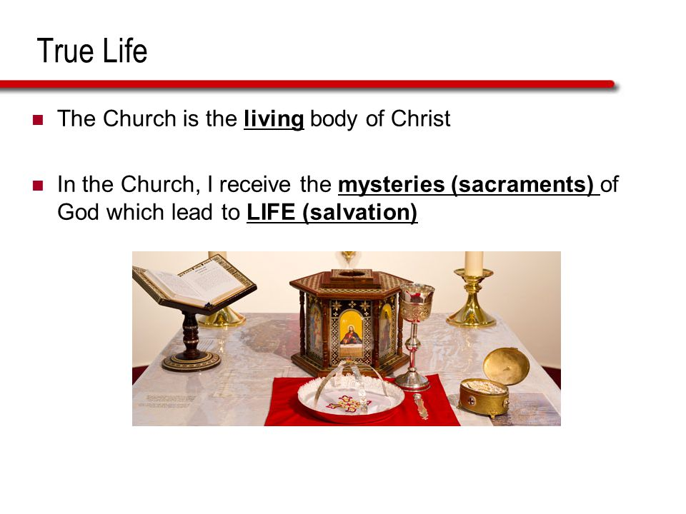 True Life The Church is the living body of Christ In the Church, I receive the mysteries (sacraments) of God which lead to LIFE (salvation)