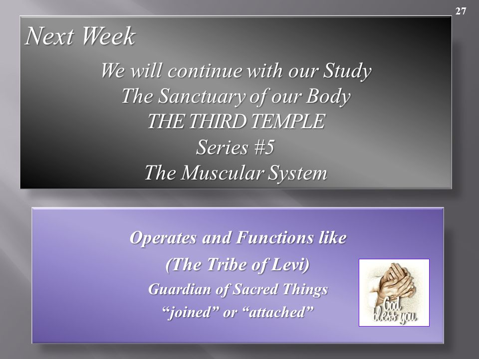 27 Operates and Functions like (The Tribe of Levi) Guardian of Sacred Things joined or attached Next Week We will continue with our Study The Sanctuary of our Body THE THIRD TEMPLE Series #5 The Muscular System