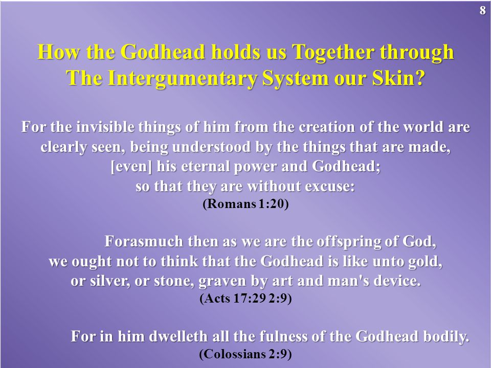 How the Godhead holds us Together through The Intergumentary System our Skin.