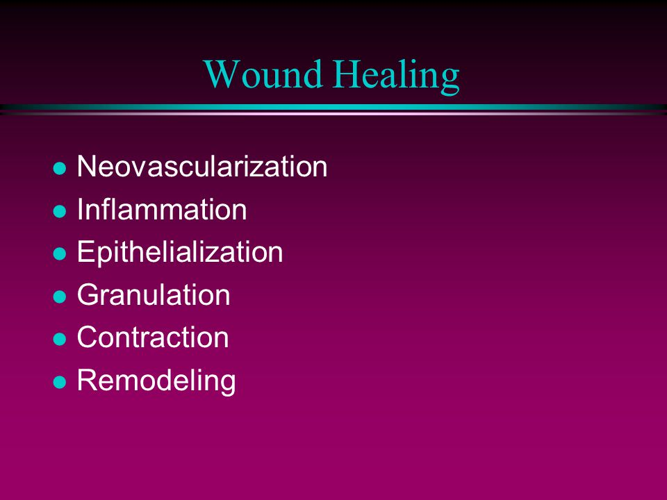 Wound Healing l Neovascularization l Inflammation l Epithelialization l Granulation l Contraction l Remodeling