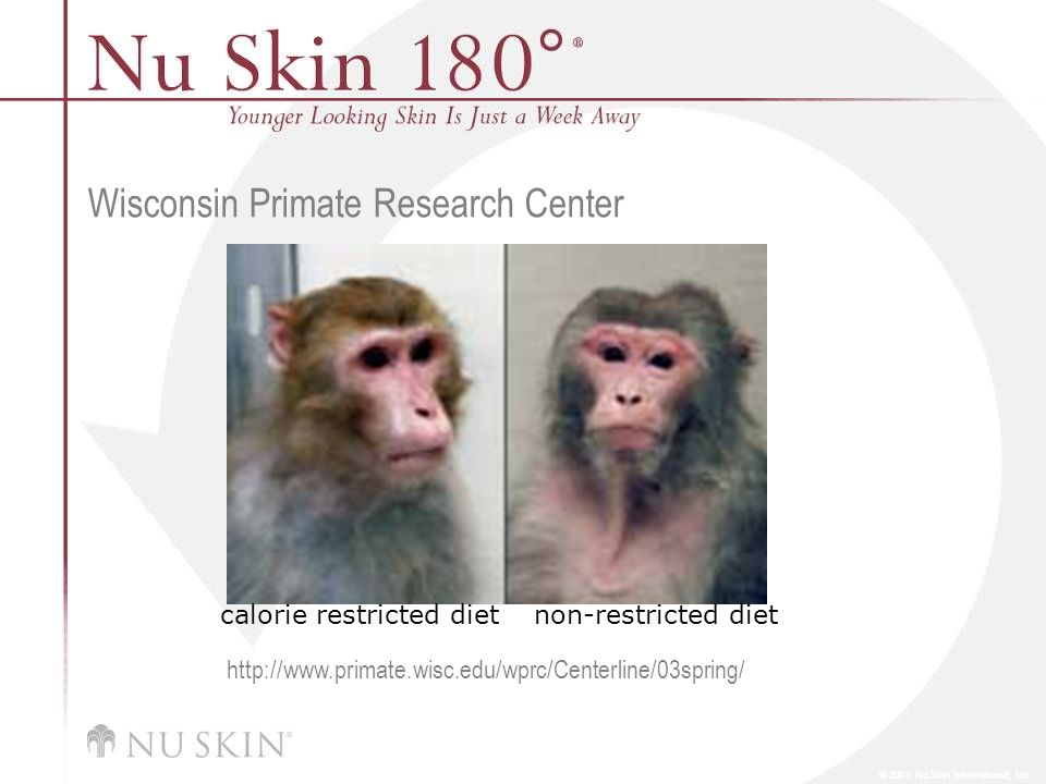 © 2001 Nu Skin International, Inc Wisconsin Primate Research Center calorie restricted dietnon-restricted diet http://www.primate.wisc.edu/wprc/Centerline/03spring/