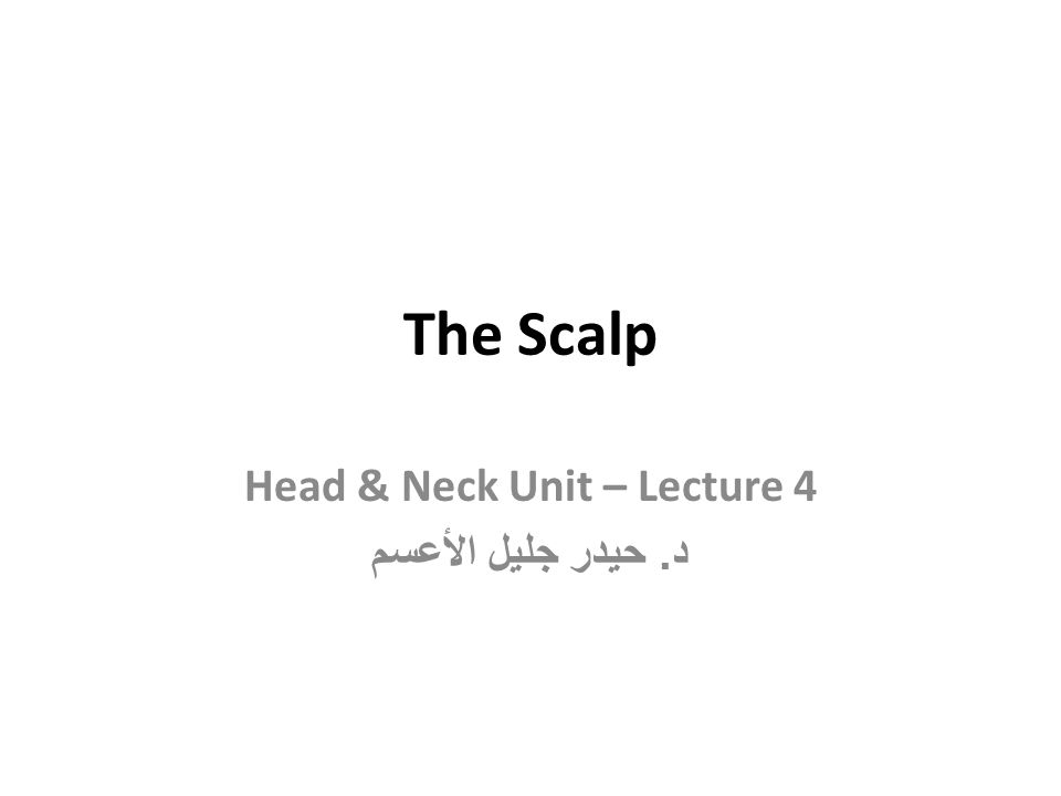 The scalp part of the head that extends from superciliary arches anteriorly to the external occipital protuberance & superior nuchal lines posteriorly.