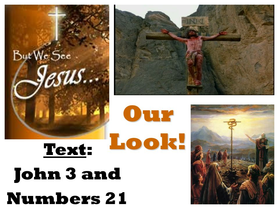 Our Look! Text: John 3 and Numbers 21