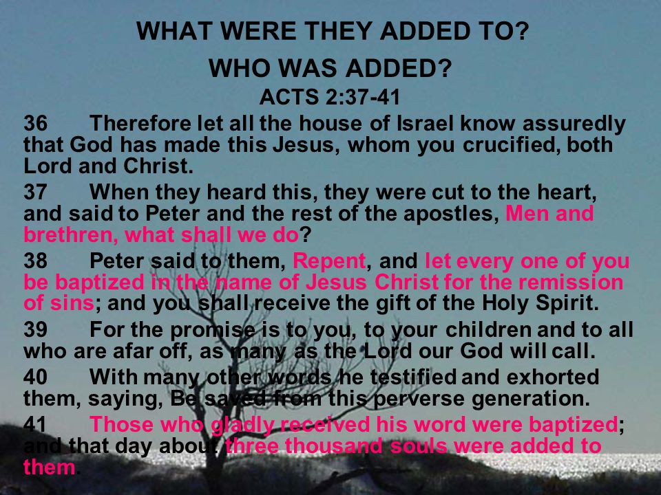WHAT WERE THEY ADDED TO? WHO WAS ADDED? ACTS 2:37-41 36Therefore let all the house of Israel know assuredly that God has made this Jesus, whom you cru