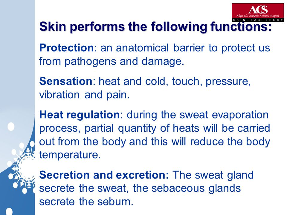 Skin performs the following functions: Skin performs the following functions: Protection: an anatomical barrier to protect us from pathogens and damag