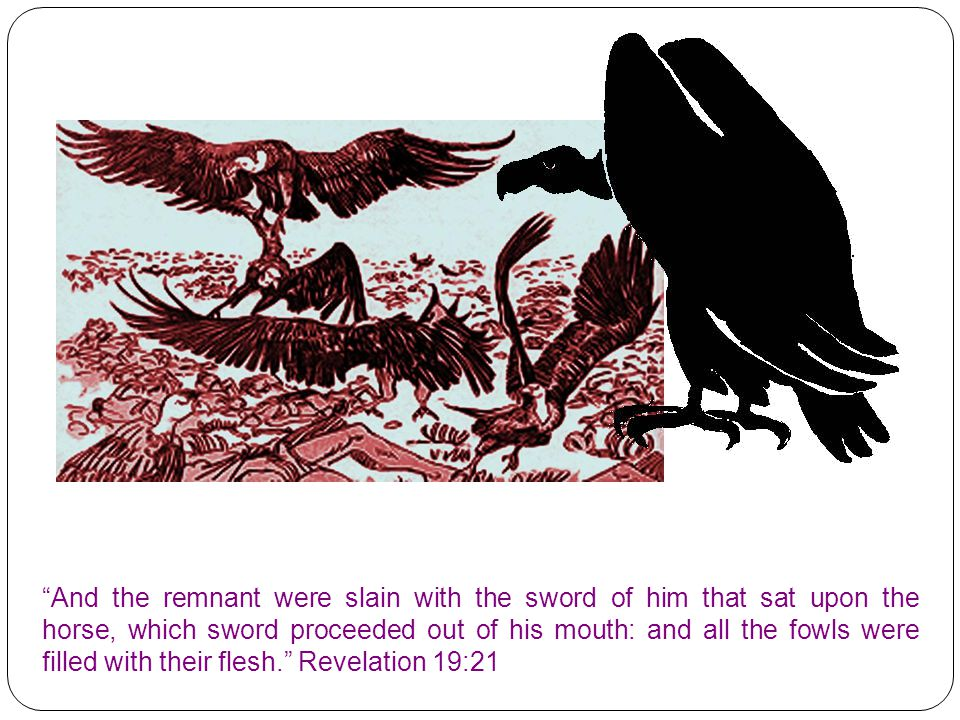 And the remnant were slain with the sword of him that sat upon the horse, which sword proceeded out of his mouth: and all the fowls were filled with their flesh. Revelation 19:21