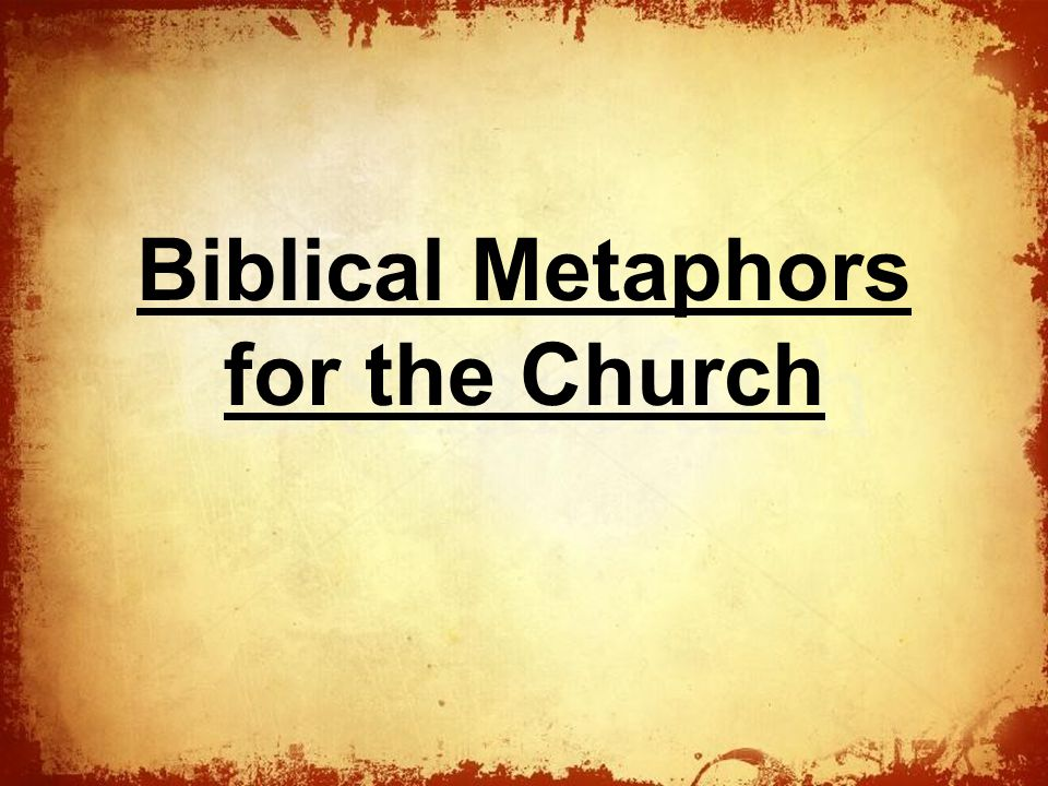 Biblical Metaphors for the Church