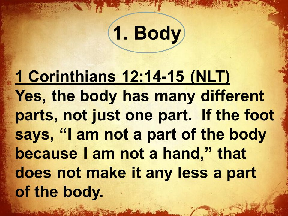 The 1 Corinthians 12:14-15 (NLT) Yes, the body has many different parts, not just one part.