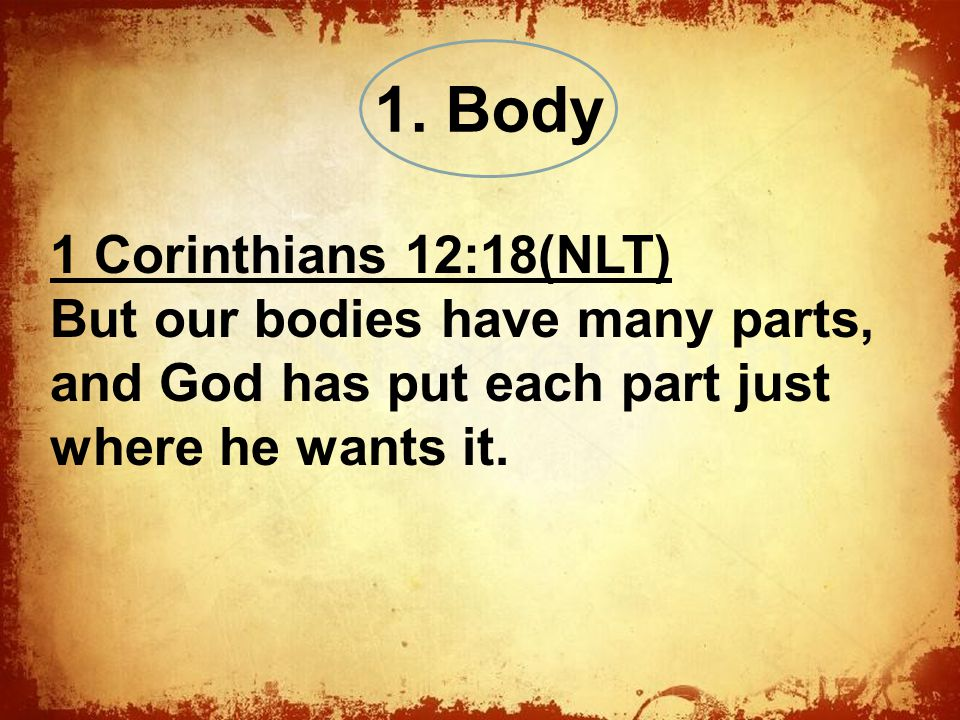 The 1 Corinthians 12:18(NLT) But our bodies have many parts, and God has put each part just where he wants it.