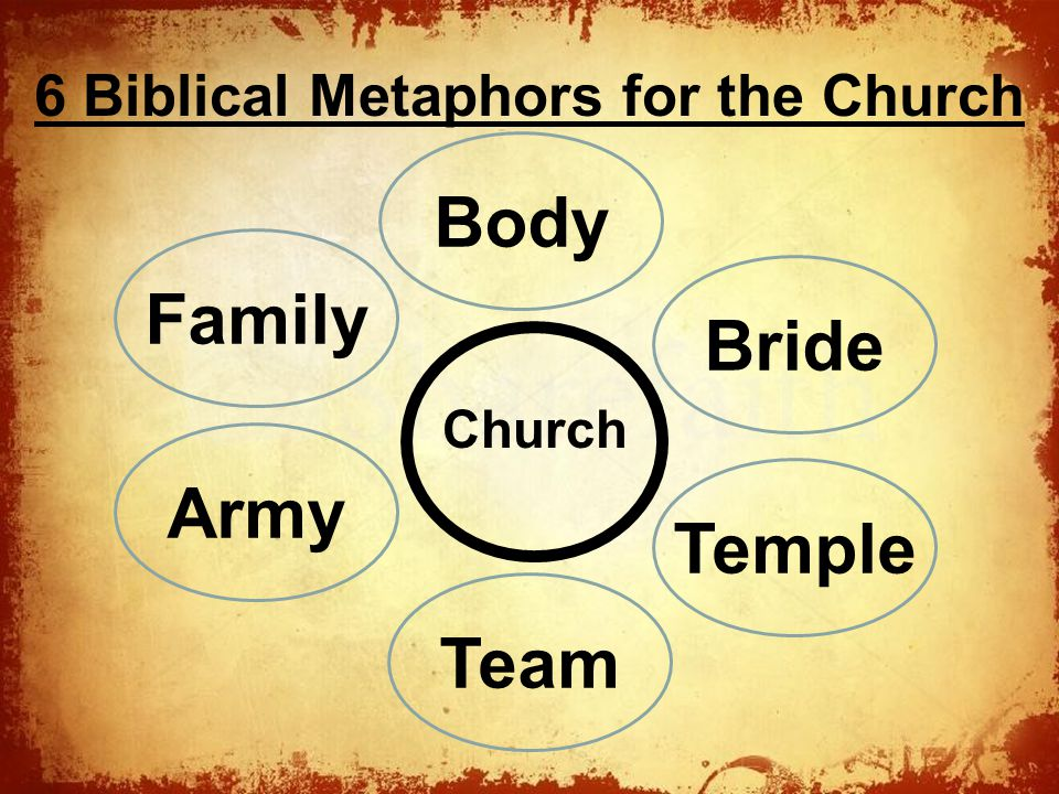 The Church 6 Biblical Metaphors for the Church Body Family Bride Temple Army Team