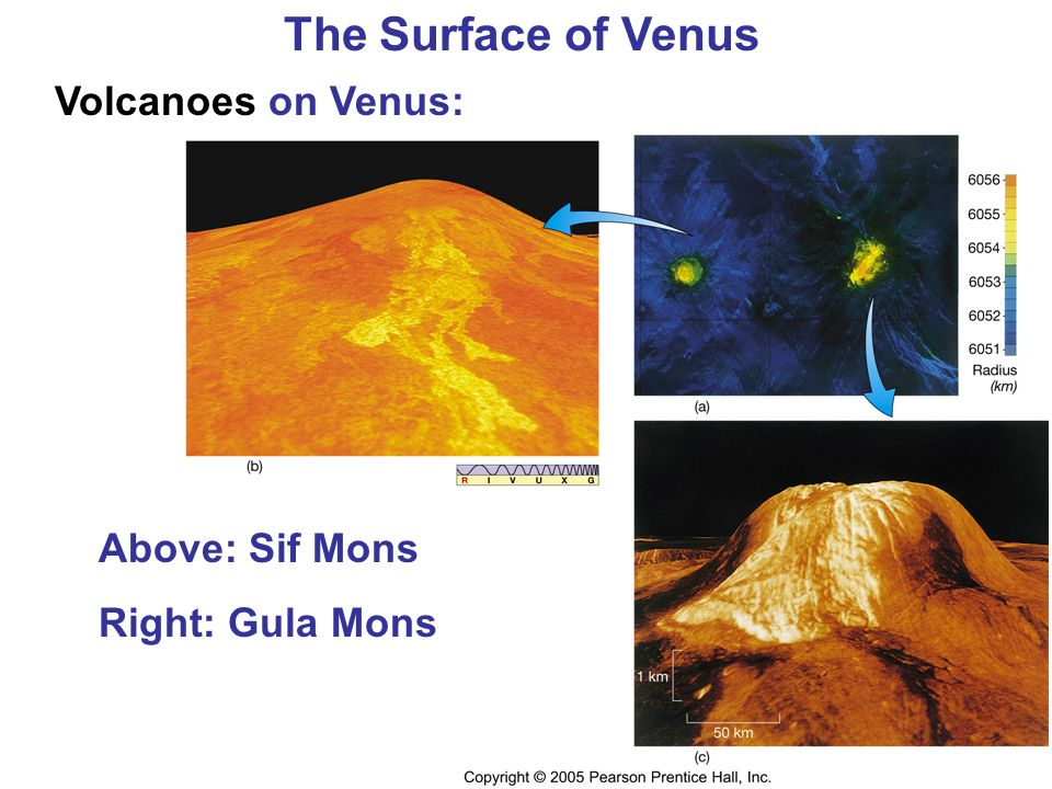 The Surface of Venus Volcanoes on Venus: Above: Sif Mons Right: Gula Mons
