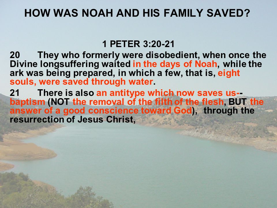 HOW WAS NOAH AND HIS FAMILY SAVED? 1 PETER 3:20-21 20They who formerly were disobedient, when once the Divine longsuffering waited in the days of Noah