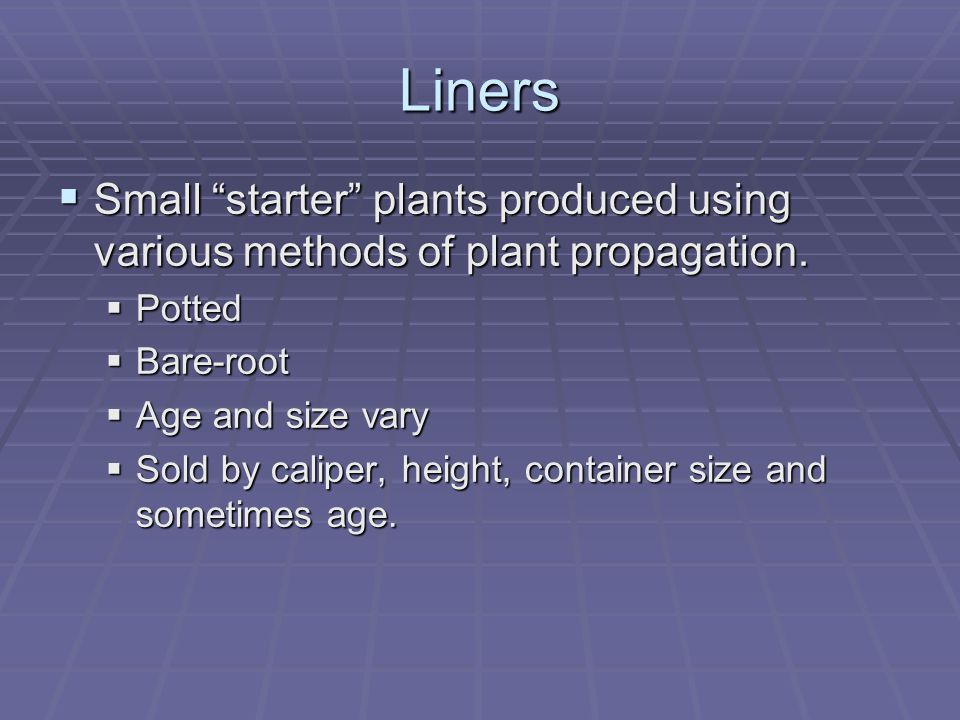 """Liners  Small """"starter"""" plants produced using various methods of plant propagation.  Potted  Bare-root  Age and size vary  Sold by caliper, heigh"""