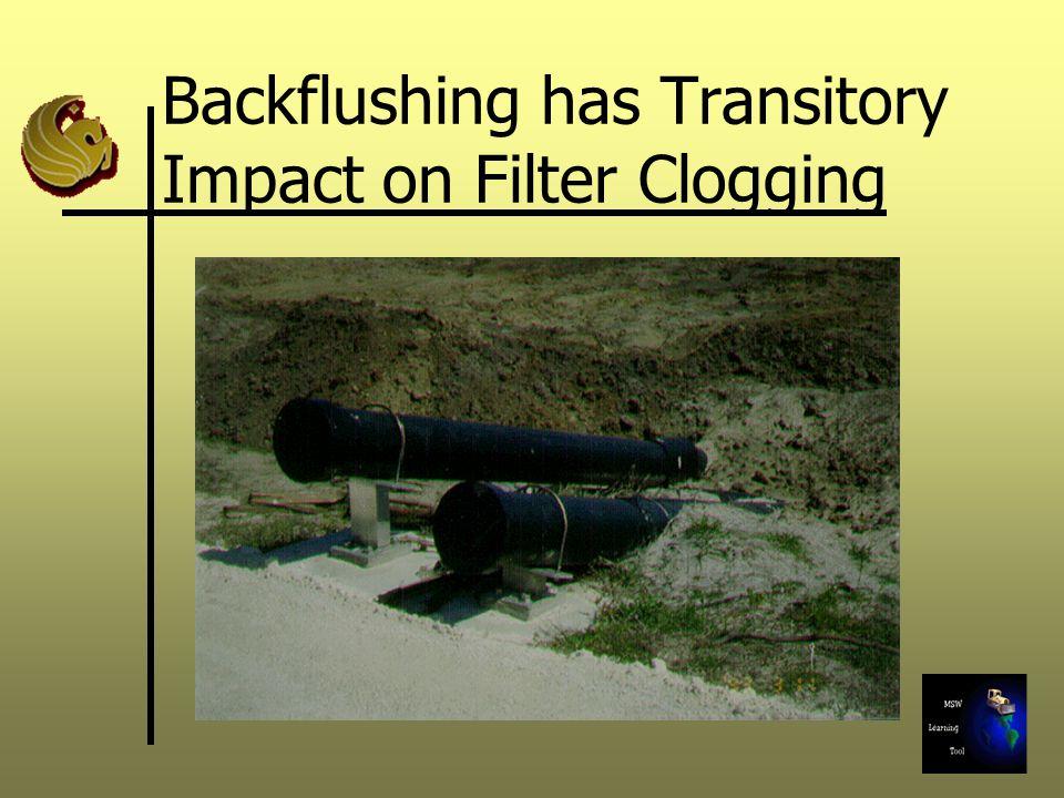 Backflushing has Transitory Impact on Filter Clogging