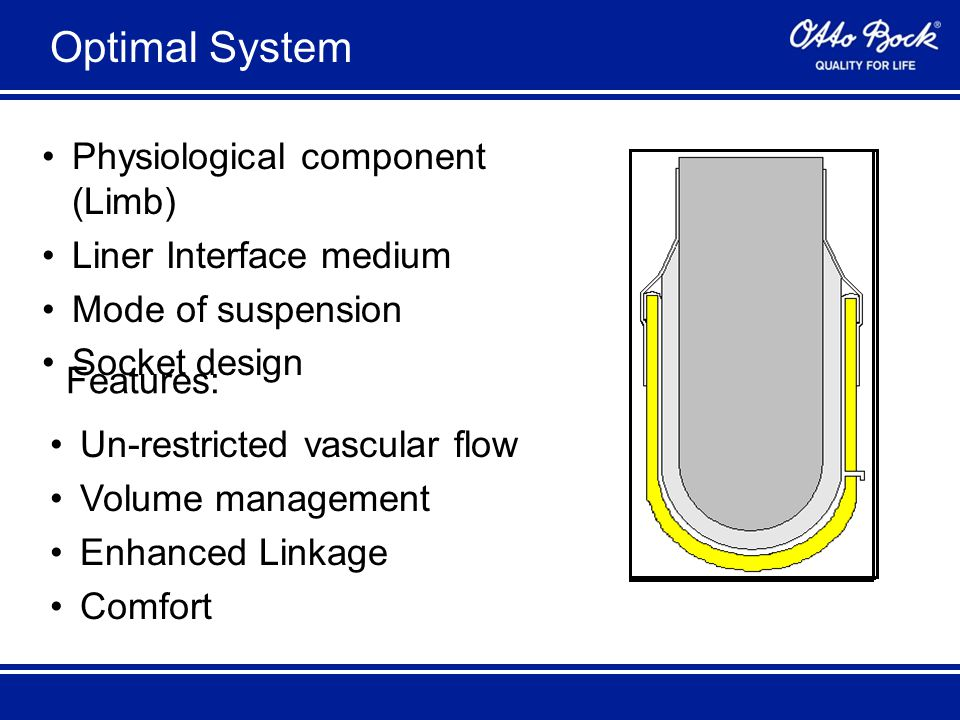 Optimal System Physiological component (Limb) Liner Interface medium Mode of suspension Socket design Features: Un-restricted vascular flow Volume management Enhanced Linkage Comfort