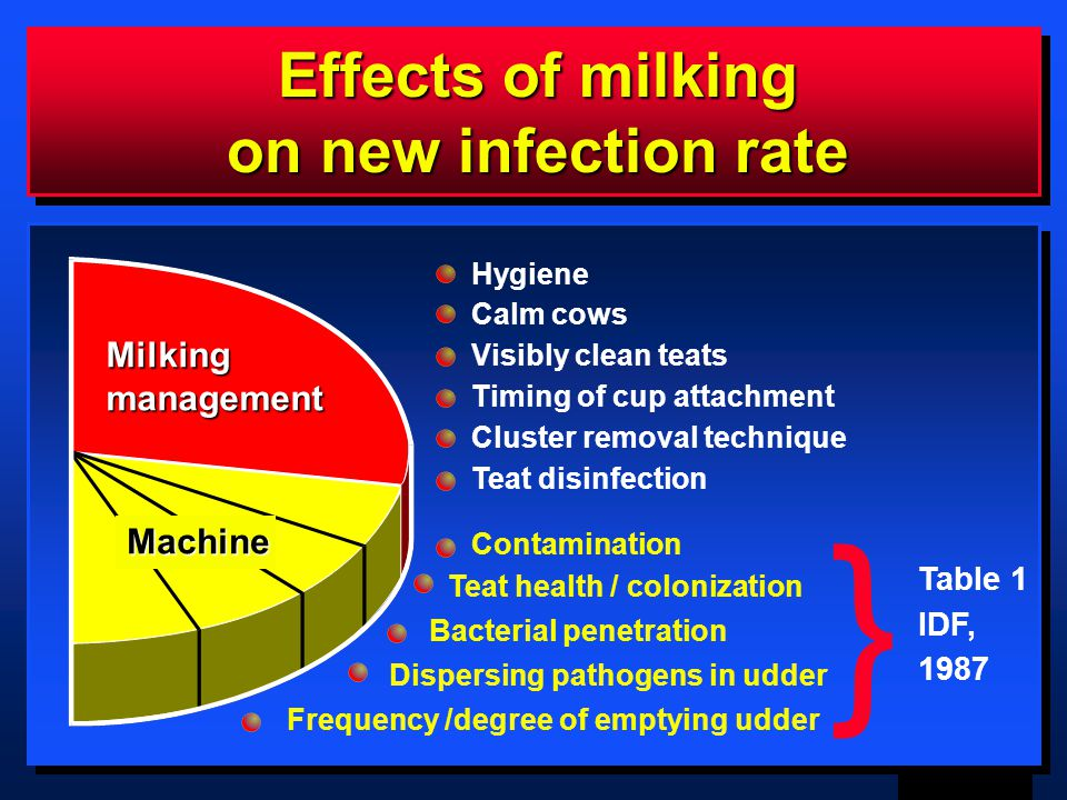 3 GAM mmch98 Effects of milking on new infection rate Milkingmanagement Machine Hygiene Calm cows Visibly clean teats Timing of cup attachment Cluster removal technique Teat disinfection Contamination Teat health / colonization Bacterial penetration } Table 1 IDF, 1987 Dispersing pathogens in udder Frequency /degree of emptying udder
