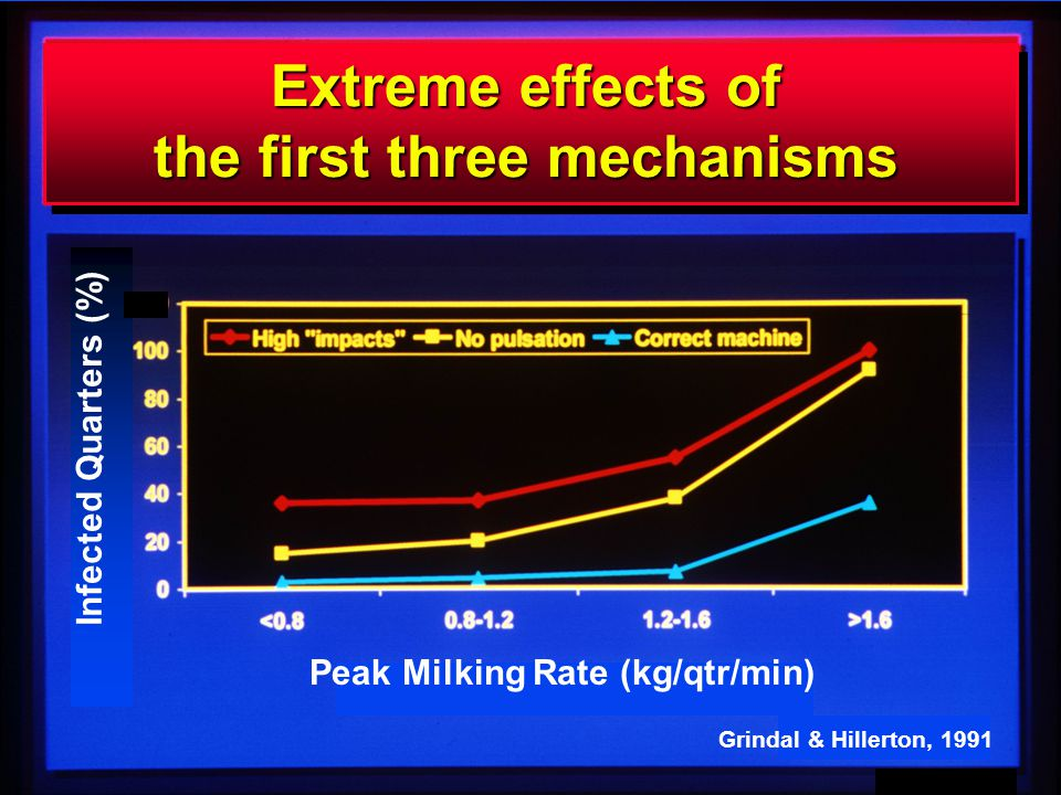 6 GAM mmch98 Infected Quarters (%) Peak Milking Rate (kg/qtr/min) Grindal & Hillerton, 1991 Extreme effects of the first three mechanisms