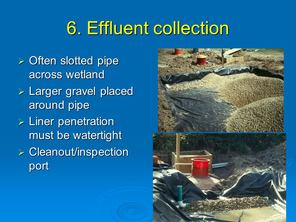 6. Effluent collection  Often slotted pipe across wetland  Larger gravel placed around pipe  Liner penetration must be watertight  Cleanout/inspec