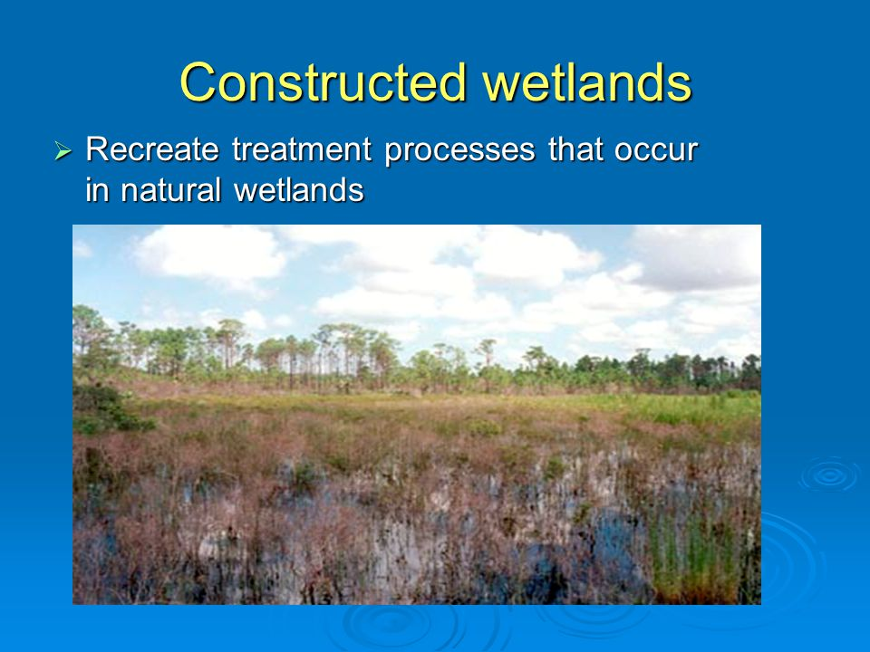 Constructed wetland  Basin/cell containing microorganisms, media, and plants that treat effluent  Effluent flows horizontally through bed