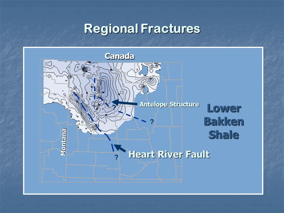 Regional Fractures Heart River Fault ? Montana Canada Lower Bakken Shale ? ? Antelope Structure
