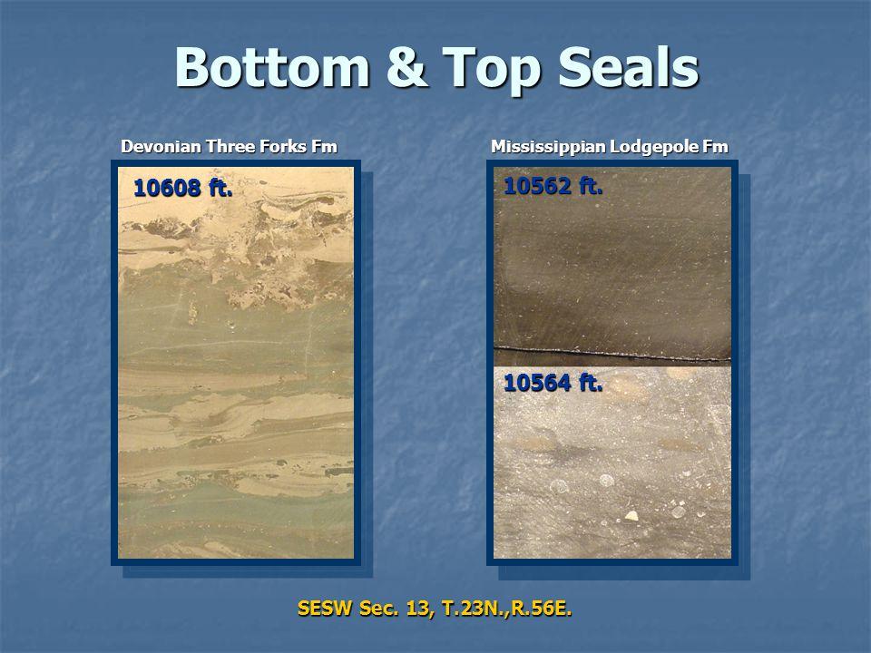 Bottom & Top Seals SESW Sec. 13, T.23N.,R.56E. 10564 ft. 10562 ft. 10608 ft. Devonian Three Forks Fm Mississippian Lodgepole Fm