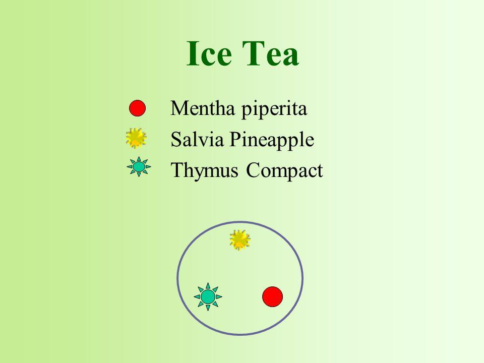 Mentha piperita Salvia Pineapple Thymus Compact