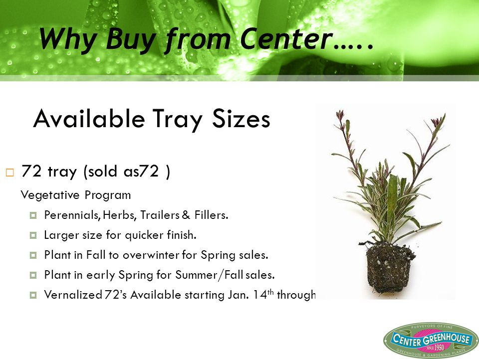 Don't Miss out.Center Greenhouse offers monthly specials that you won't want to miss.