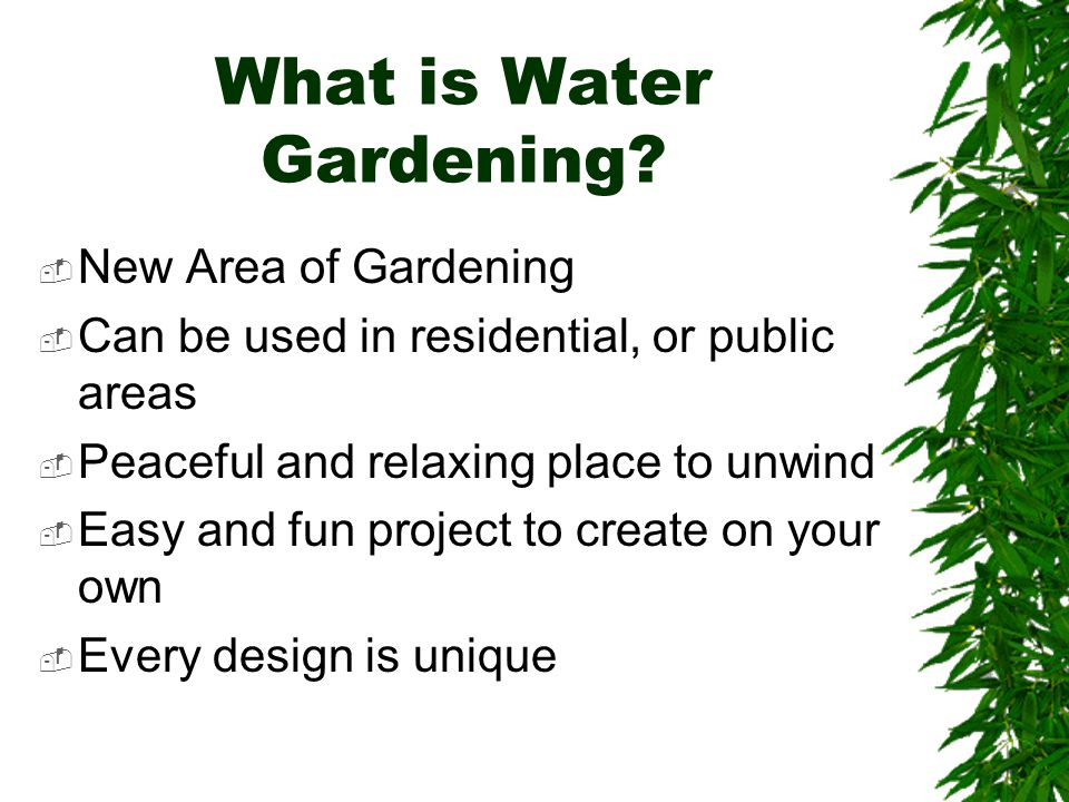 What is Water Gardening.