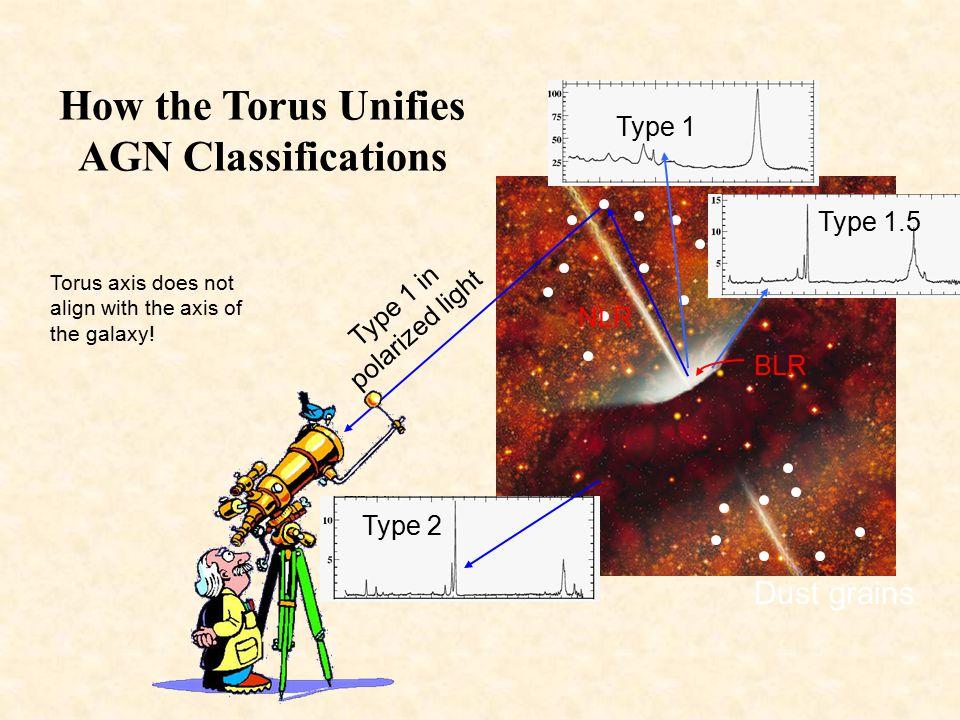 Polarization at High Inclination (Type 2) 1)Strong polarization 2)Perpendicular to torus axis