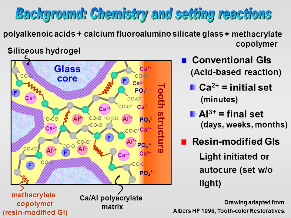 True glass ionomers Conventional Resin-modified or 'self-cured' 'light-cured' Mixing Cure in the dark acid-base reaction