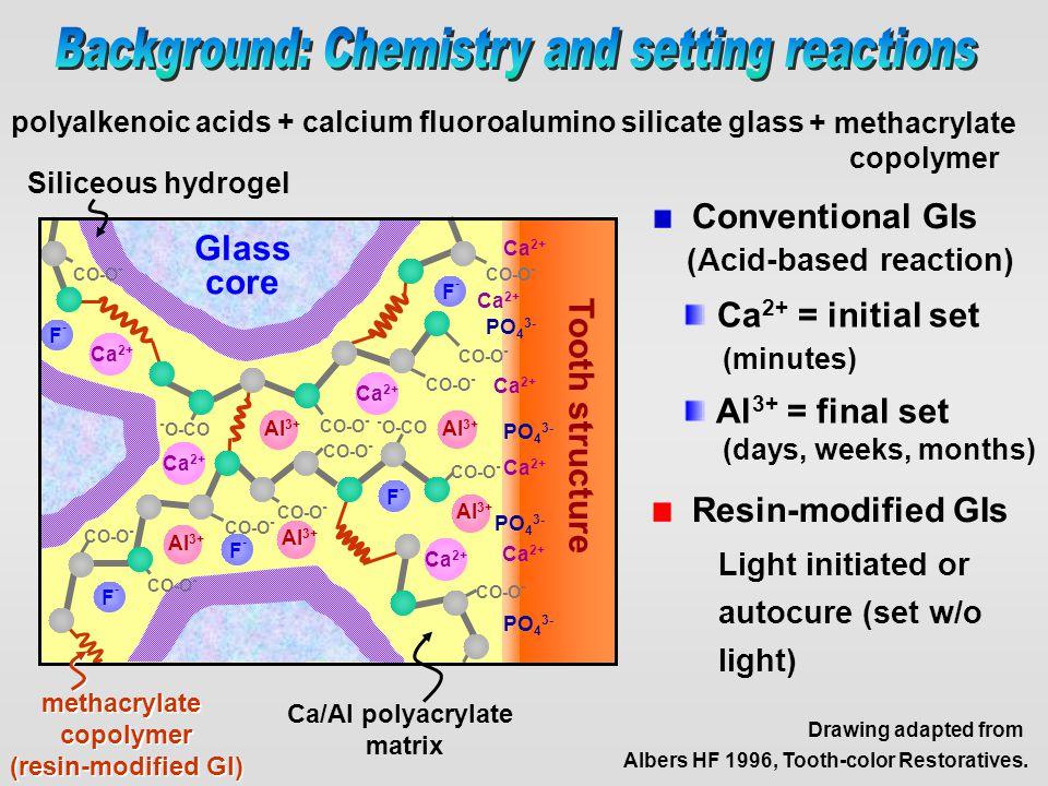 Conventional GIs (Acid-based reaction) polyalkenoic acids + calcium fluoroalumino silicate glass Glass core Tooth structure Ca 2+ Al 3+ F-F- F-F- F-F-